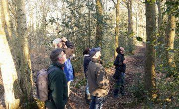Vrijwilligers brengen soorten Zwolse groengebieden in kaart