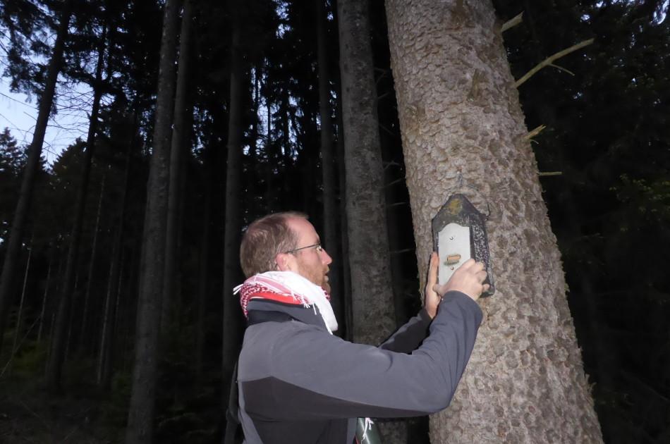 controle van een vleermuiskast door Mark Hoksberg