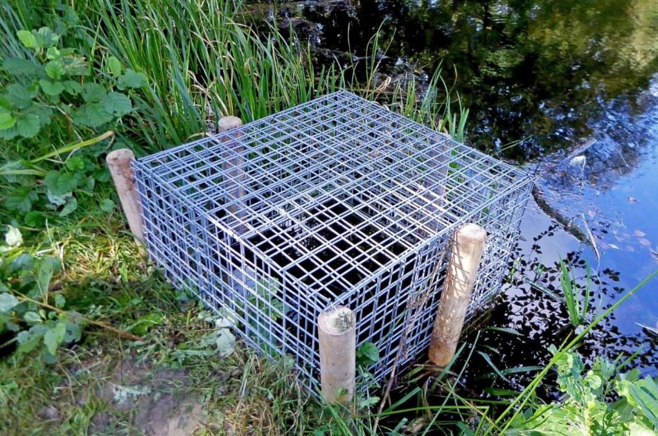 om verstopping van deze buis te voorkomen is rondom de instroomopening een kooi geplaatst