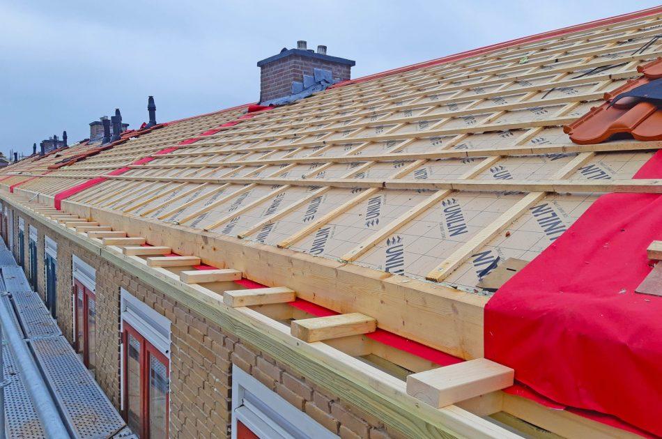 Huismus, gierzwaluw en vleermuizen verblijven soms onder de dakpannen. Bij het vervangen van het dak worden hun verblijfplaatsen vernield. Foto: Rutger Olthof