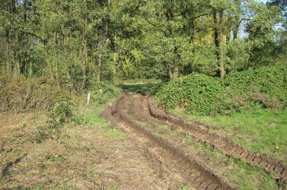 Insporing van de grond: onze toezichthouder probeert dit te voorkomen