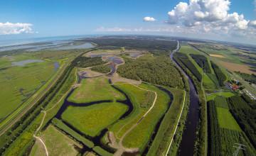 Natuurontwikkeling Oostvaardersveld