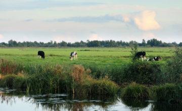 Naar een duurzame, toekomstbestendige landbouw