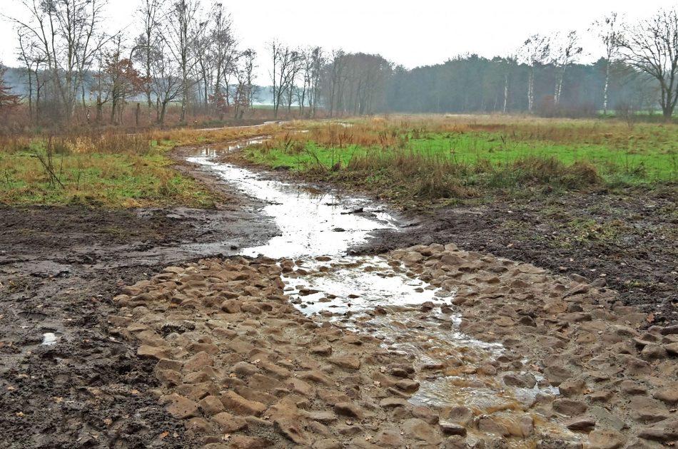 Nieuwe slenk over maaiveld voorkomt snelle afvoer van water