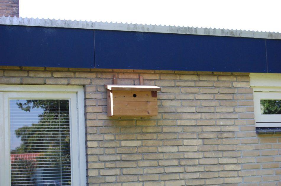 Tijdelijke nestkasten voor huismus compenseren het verlies aan nestplaatsen. Foto: Marco van der Sluis