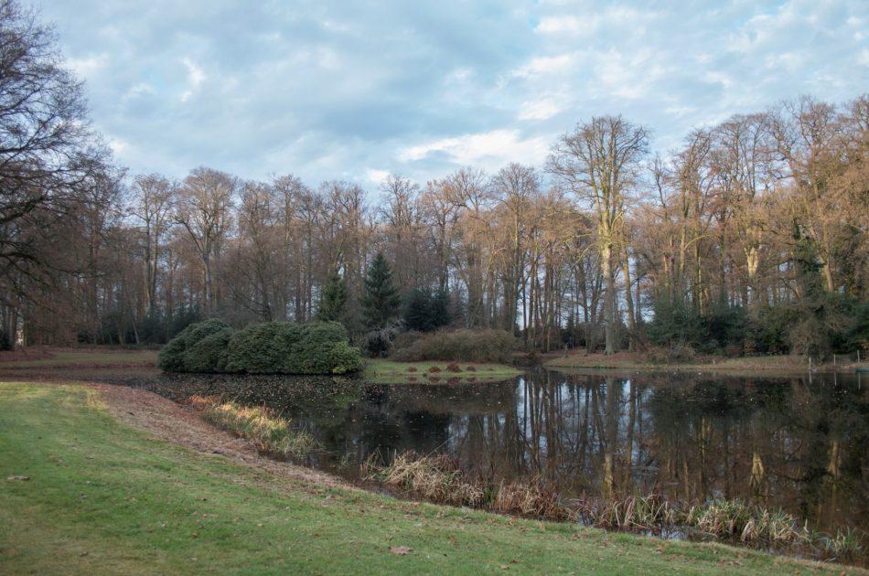 BRIM-subsidiabele onderdelen zijn de vijverpartij, oevers, heesterbeplantingen en het parkbos op de achtergrond