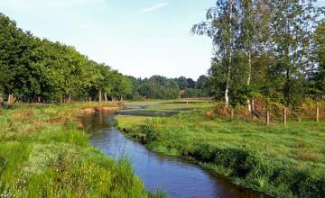 Jufferbeek: een ecologische verbinding op Vliegveld Twente
