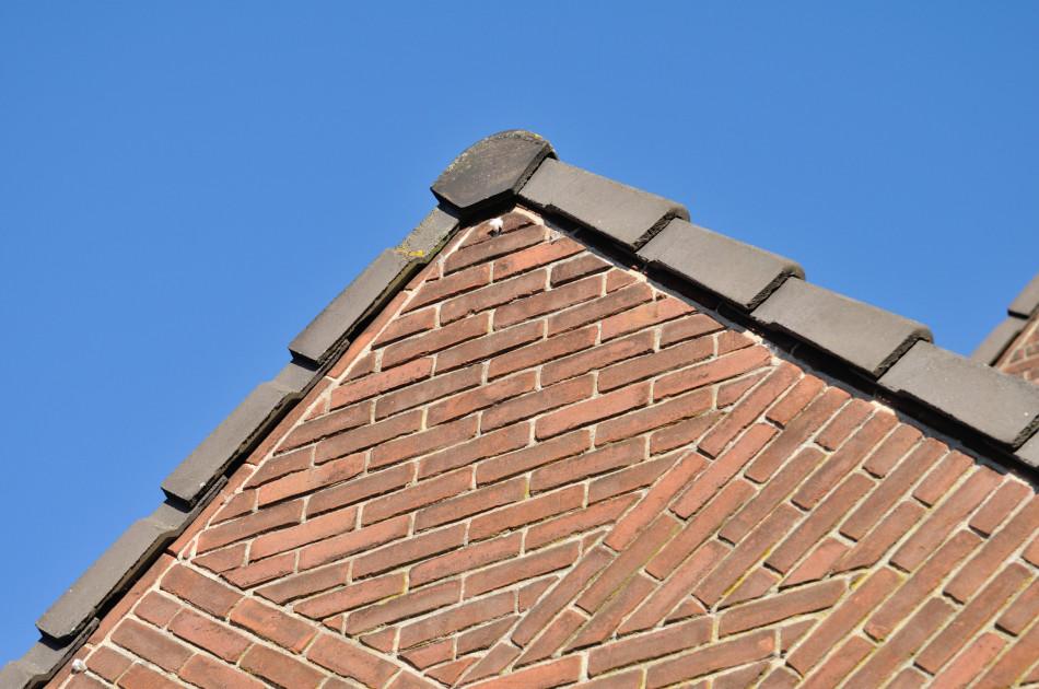 via een open dakrand kunnen vleermuizen de spouwmuur bereiken